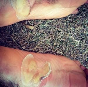 My feet at the finish line.