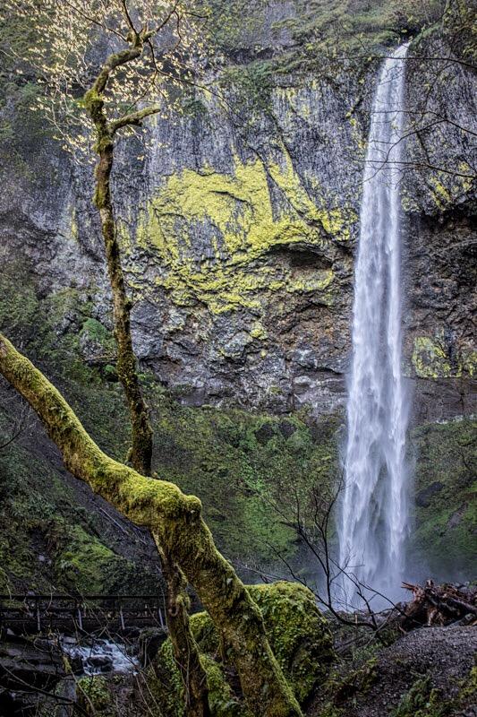 So many waterfalls.